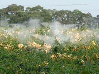 自動化噴霧設備-2